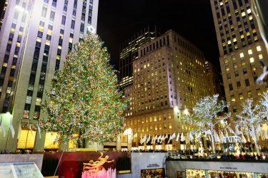 今年のロックフェラーセンターのクリスマスツリーは、ニューヨーク州のフロリダから