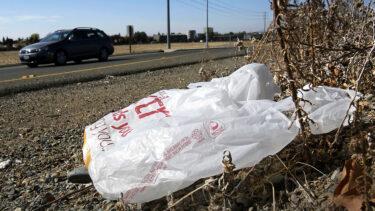 10月からニューヨーク州でビニール袋禁止法が施行