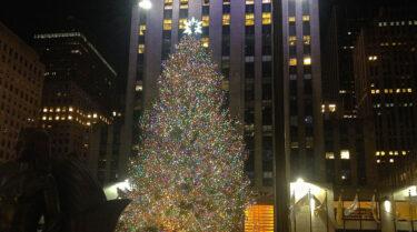 今年もロックフェラー・センターのクリスマスツリーがやってくる