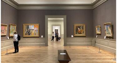 ニューヨークの美術館と動物園の収容人数が50%、映画館は33%に増加